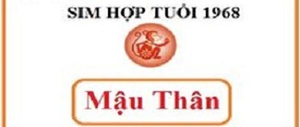Điểm nổi bật của sim số điện thoại phong thủy hợp tuổi 1968 Mậu Thân - Sim phong thủy - Simphongthuy.vn  - Blog